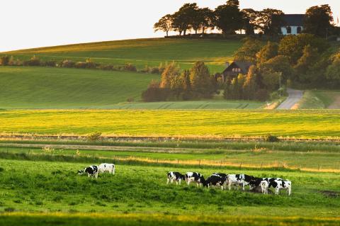 Biogas från Jordberga minskar utsläppen från transporter