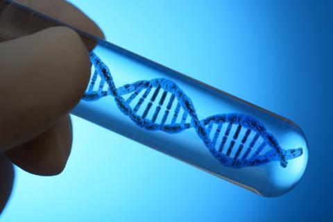 Sangers Sequencing Service Market Analyzed by Business Growth, Development Forecast, Applications and Future Prospects 2027
