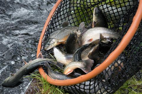 Pressinbjudan: Nationell vattenbrukskonferens i Åhus