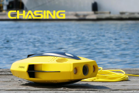 Chasing Dory invites you on adventures beneath the surface