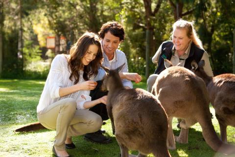 Australia kåret til årets reisemål!