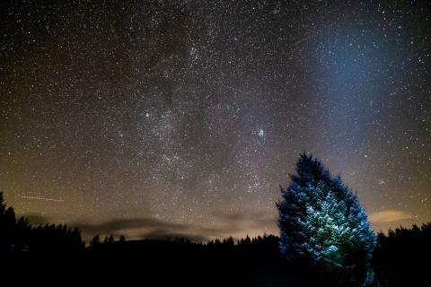 Scotland reaches for the stars