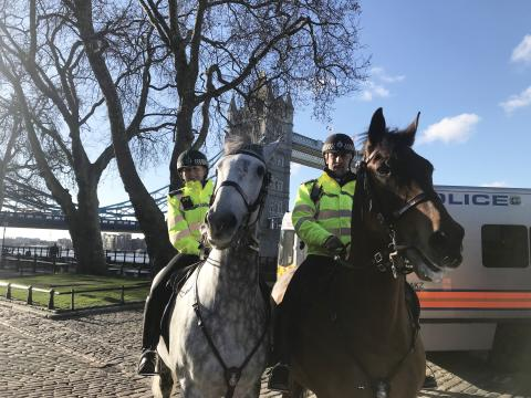 Officers from the Met's Mounted Branch