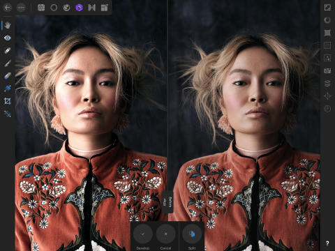 Affinity Photo for iPad: Develop Splitscreen