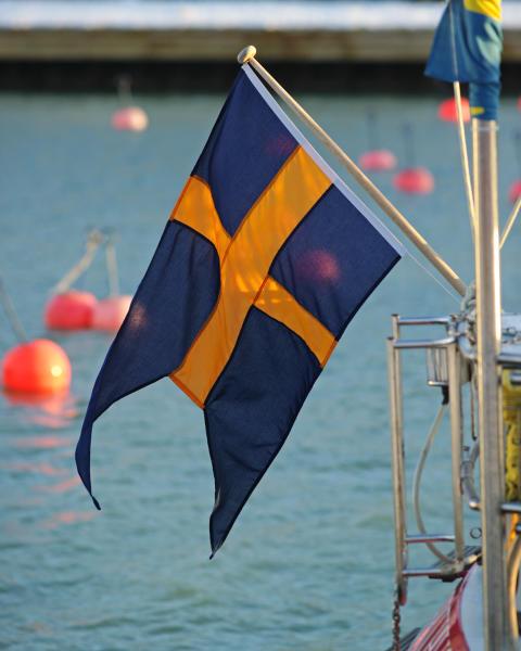 Tvåtungad båtflagga
