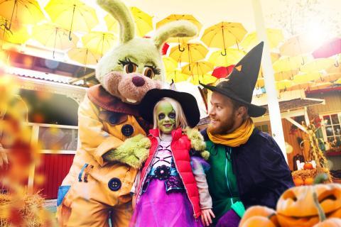 halloween_151124_kanin_haxa_pumpa_4