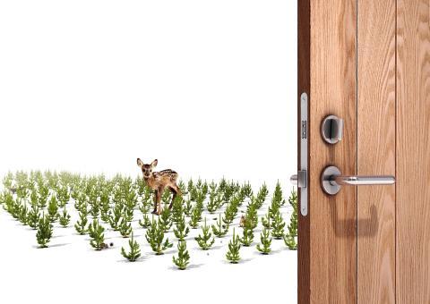 JELD-WEN ønsker ny EU tømmerforordning velkommen