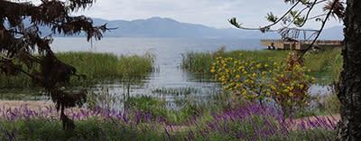 Kansainvälisiä projekteja - Fuxianjärvi ja Stonehenge