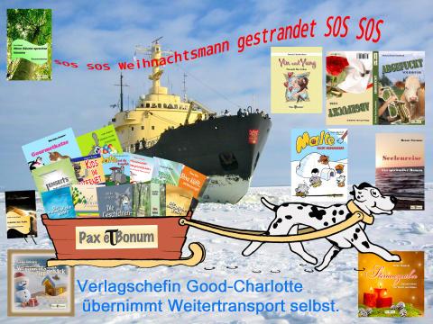 SOS SOS Weihnachtsmann gestrandet SOS SOS