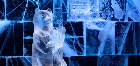 Vilda möten på årets ICEBAR BY ICEHOTEL Stockholm