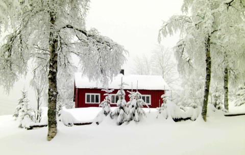 Ledige hytter i vinterferien