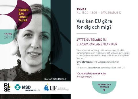 Brown Bag Lunch Talks:  Vad kan EU göra för dig och mig?