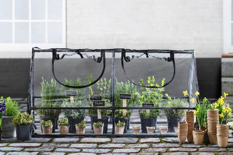 Redo för våren: sju tips till trädgården