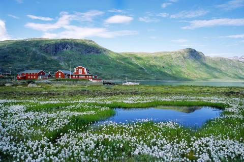 Das mit 5,2 Millionen Einwohnern dünn besiedelte Land Norwegen verfügt über ein flächendeckendes 4G-Breitbandinternet.