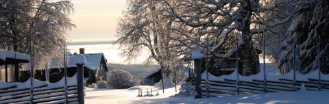 Topp 5: Här firade svenskarna jul och nyår.