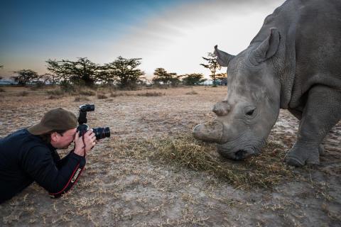 TUI inviterer til Facebook Live-sending om dyrs velferd på ulike reisemål