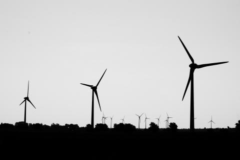 Vindkraft, svartvit