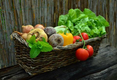 Pressinbjudan: Lyckat odlingsprojekt i Fridhem