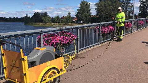Blommor ska vattnas med hjälp av elcykel istället för traktor