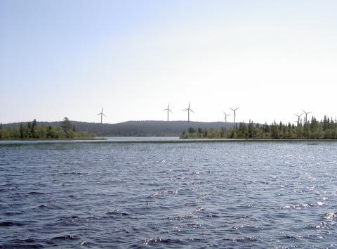 Polarbröd köper vindkraftverk och producerar egen el