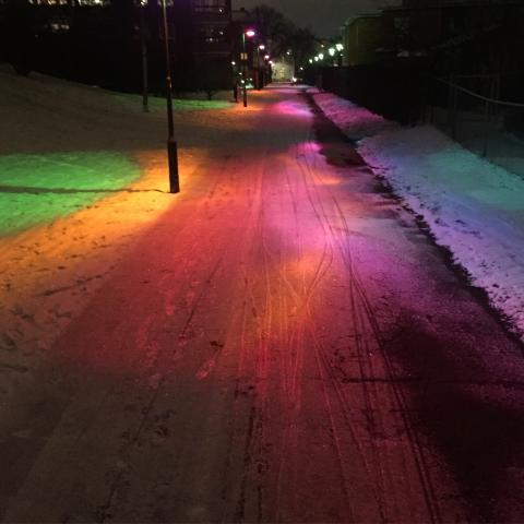 Stadens ljus: Sorgenfri har 19 ljusobjekt och 7 andra punkter på programmet