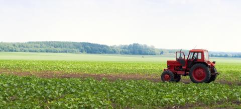 17 miljoner till forskning om hur växthusgasutsläpp kan minskas i skogs- och jordbruket