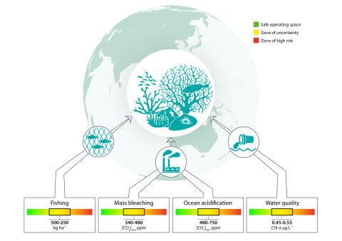 Så mycket klarar korallreven