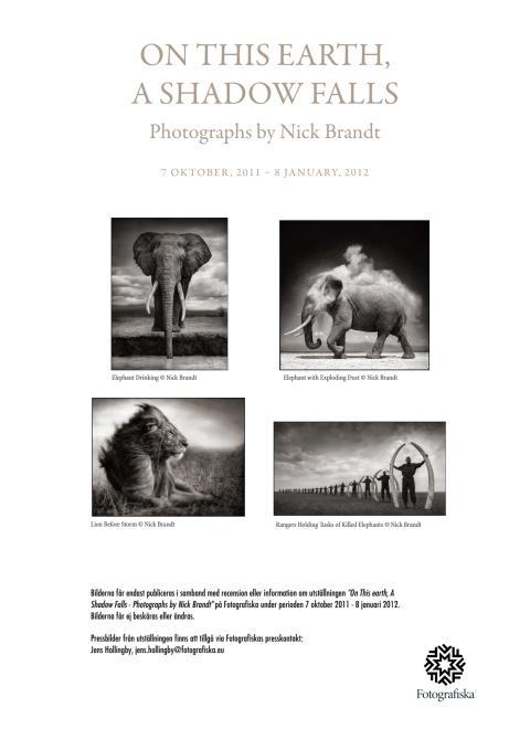 Pressbilder Nick Brandt (vid publicering av flera verk)