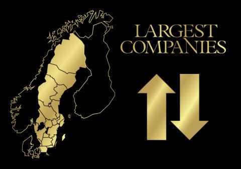 Vilka är de största företagen i ditt län? Unika topplistor del 3 av 3.