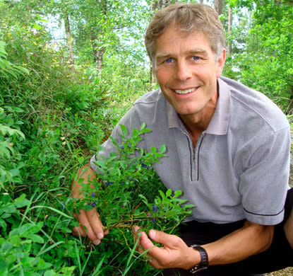 SLU-expert: Svagt blåbärsår 2012