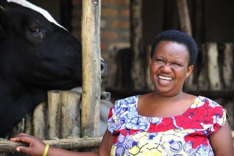 Alphonsine Mubahabana fick en ko - är nu framgångsrik bonde