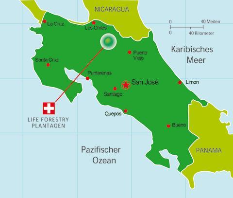 Teakplantagen von Life Forestry in Costa Rica
