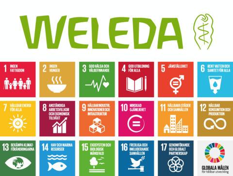 Hudvårdsföretaget Weleda bidrar till samtliga av FN:s 17 Globala mål för hållbar utveckling – Nu presenteras Weledas årliga hållbarhetsrapport för 2018