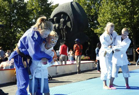 Midler til lokalhistorie, naturglede, komponering og judo