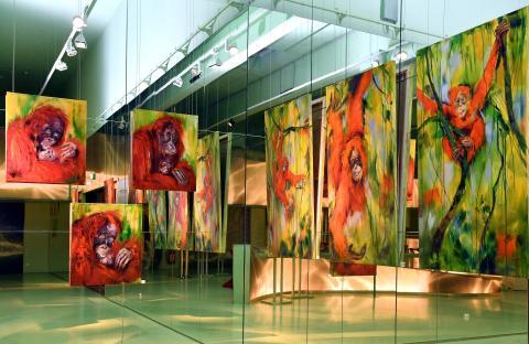 Orang-Utans - so fern und doch so nah am Herzen