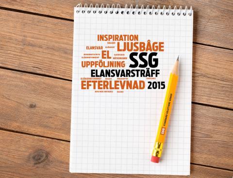 SSG Elansvarsträff 2015