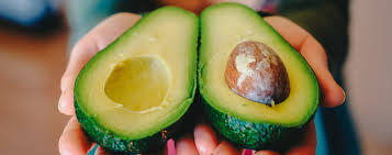 Avocado Market Improving the Growth Market Dynamics and Trends   Brooks Tropicals, Costa Group, Del Rey Avocado Company, Fresh Del Monte Produce