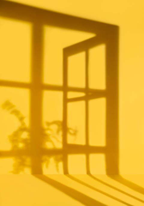 Hur formar ljuset och mörkret vårt liv? Det nordiska ljuset blir fokus på Nordiska museet