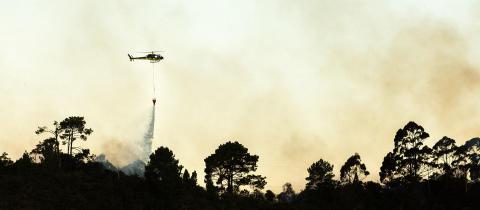Lyssna på Riskpodden om skogsbränder