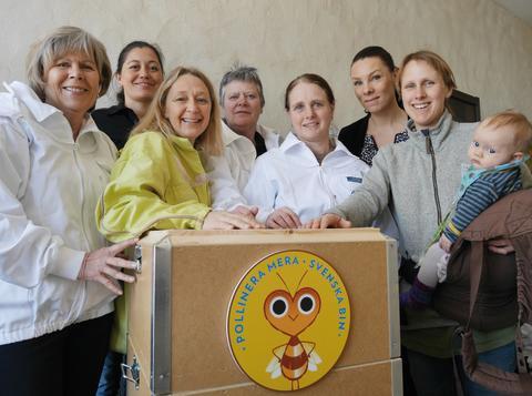 Fler kvinnor i växande biodlarbransch
