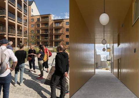 Två av tre nomineringar till Träbyggnadspriset.