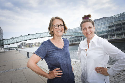 Lights in Alingsås unites ex-participants all over the world
