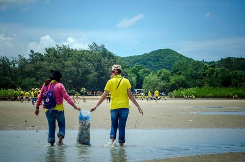 Beach clean up under Panasonic Mangrove Reforestation 2016