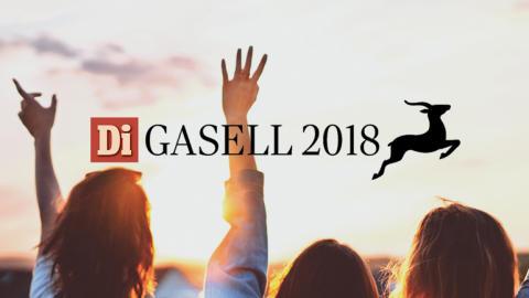 Ateles Consulting - Gasellföretag för tredje gången!