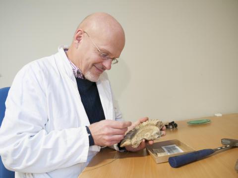 Naturhistoriska riksmuseet får tillskott i sin expertpanel - möt jourhavande paleontolog