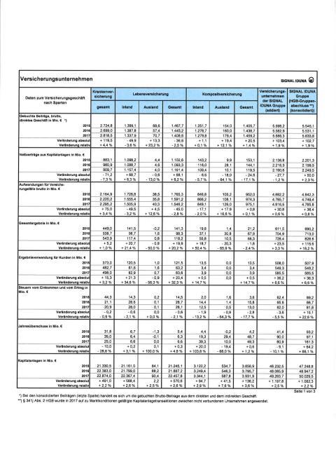 Bilanzkennzahlen 2018