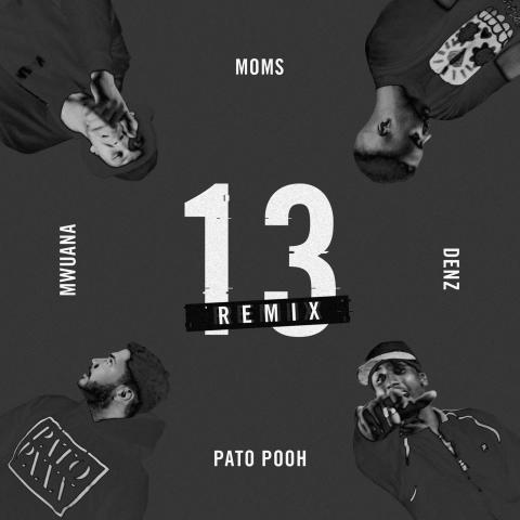 Omslag Pato Pooh, 13 Remix