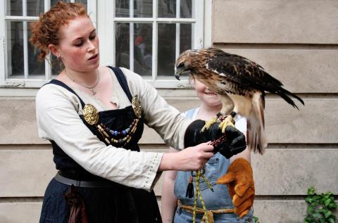 Falk til vikingemarkedet på Nationalmuseet