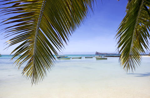 Mauritius_Boote, durch Palmen gesehen©MTPA_Bamba
