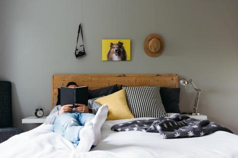 Koiria ja kissoja reilusti yli miljoona – niistä teetetyt kuvat ovat nyt myös sisustustrendi